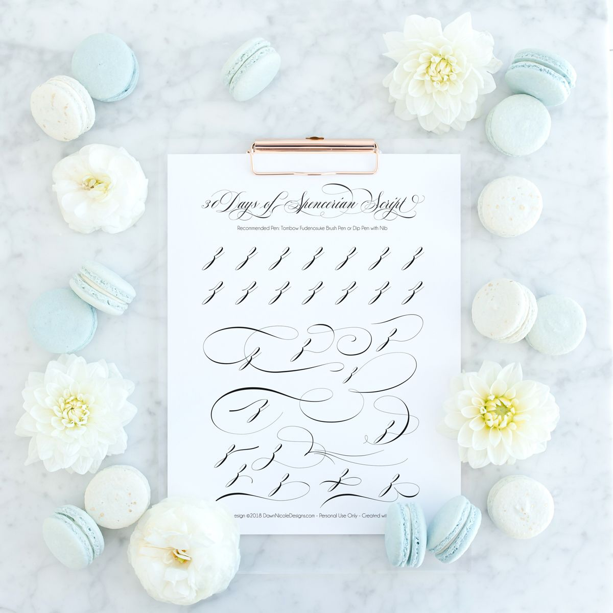 Spencerian Script Style Letter Z Worksheets By Dawn