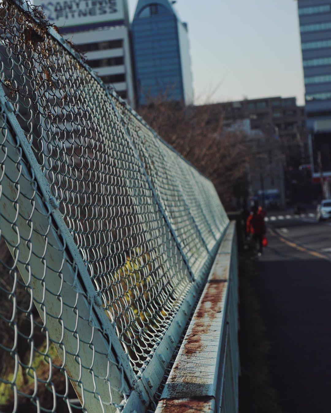 Rusted wire fence / 市ヶ谷 --- Canon_Eos KISS M Lens: EF-M 32mm F1.4 --- #vsco #vscogram #dailysnaps #my_eos_photo #eoskissm #efm32mmf14stm #eosm #streetsnaps #tokyocameraclub #tokyostreet #市ヶ谷 #東京カメラ部 #東京カメラ部instagram #東京散歩