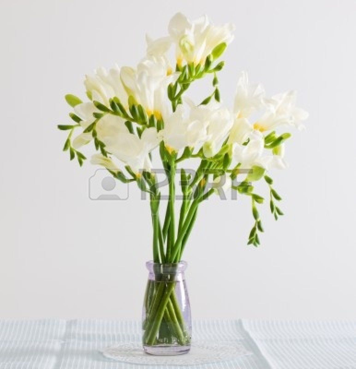 White freesia pinterest pinterest explore freesia bouquet bouquet flowers and more izmirmasajfo