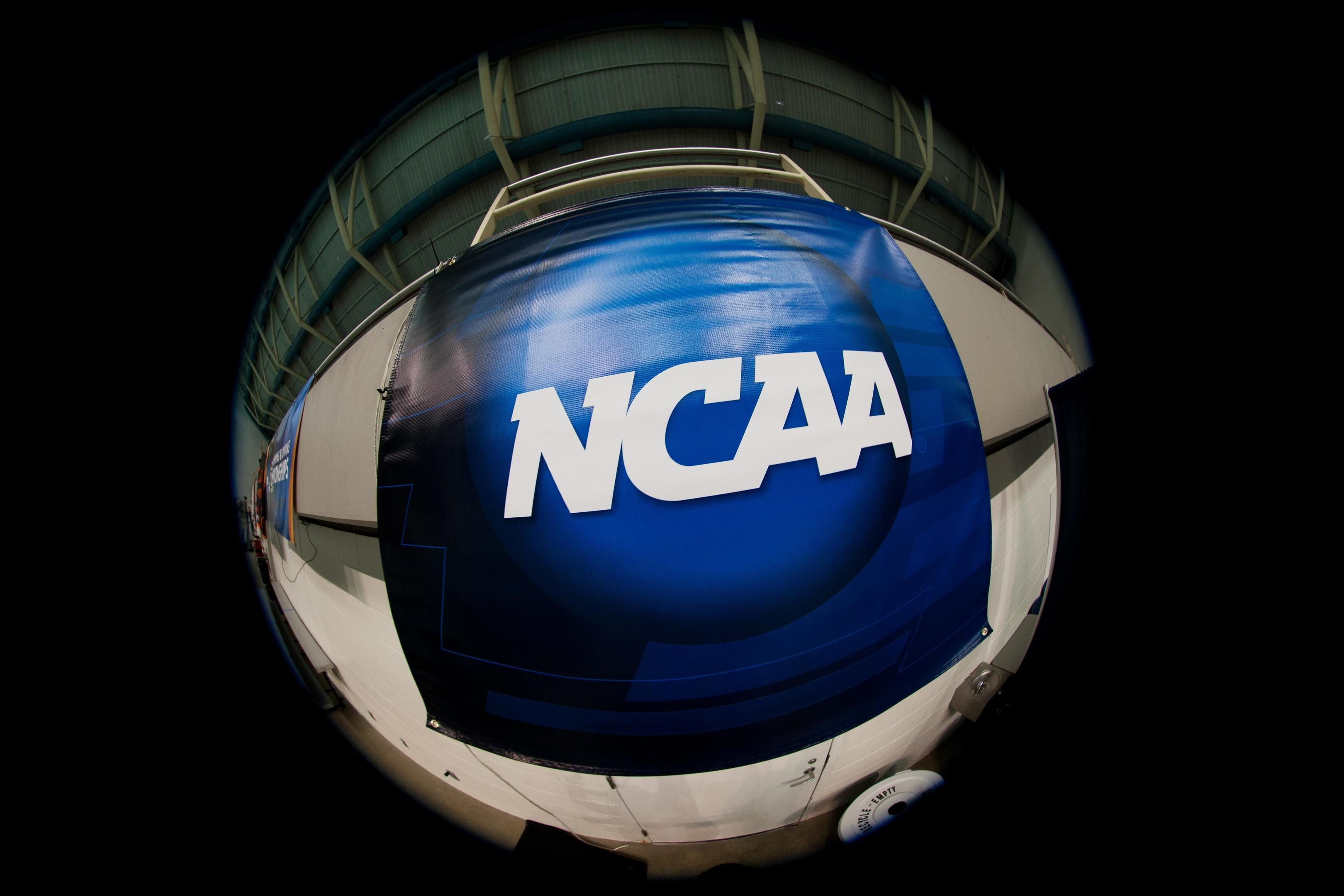 Utsa Adds 6 7 Texas A M Transfer Montse Castro College Recruiting College World Series Swimming