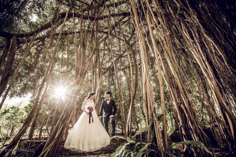 Pre wedding Photoshoot at Botanical Garden in Singapore
