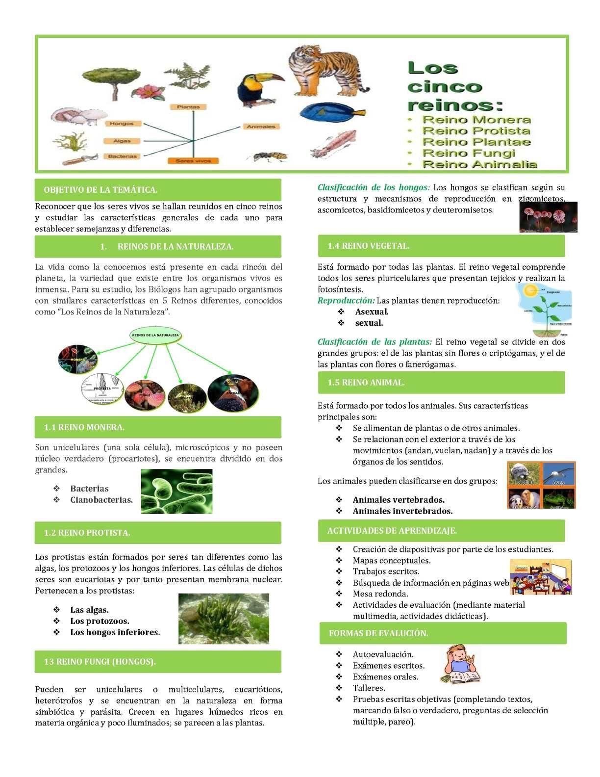 Reinos De La Naturaleza Clasificacion De Seres Vivos Ciencia Natural Ciencias De La Naturaleza