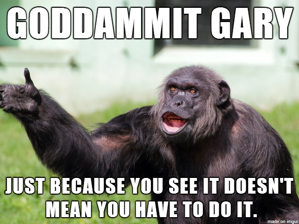 Angry Supervisor Monkey Is Fed Up Funny Hump Day Memes Monkey Memes Monkeys Funny