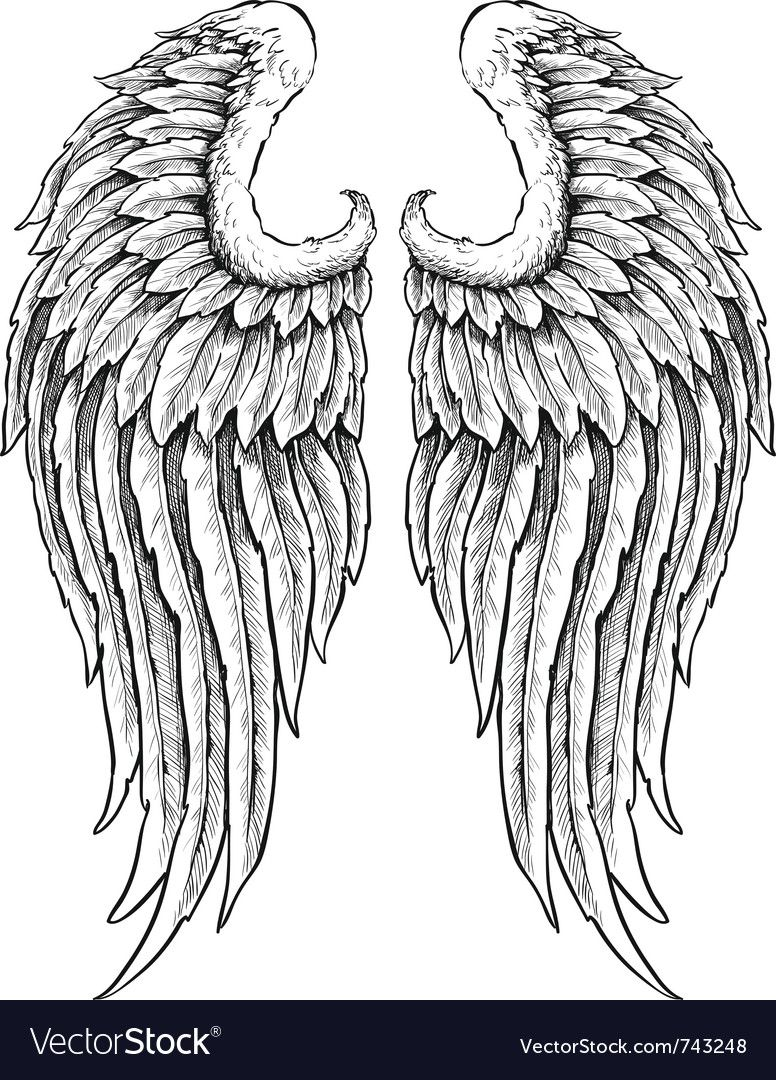 Hand drawn angel wings. Download a Free Preview or High