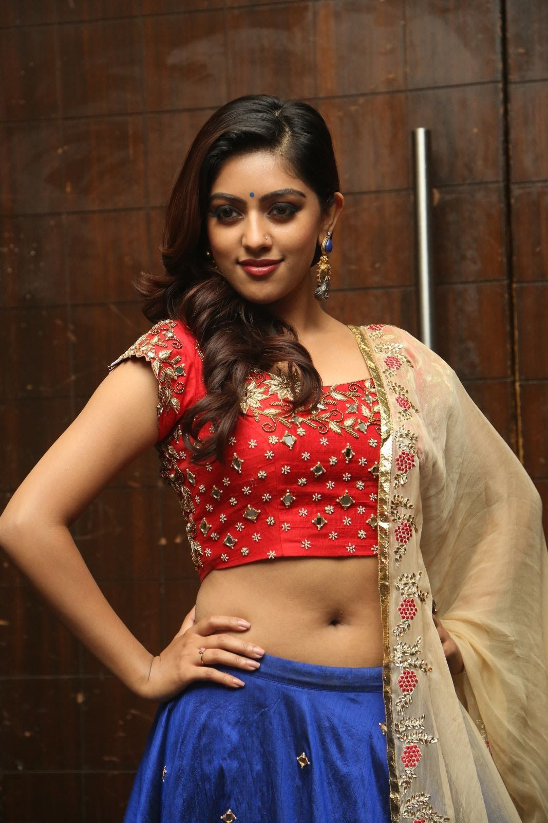 Malayalam Actress Anu Emmanuel Navel Show Photoshoot Gallery  Hot -7695