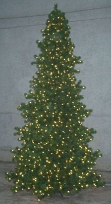 15 Foot, LED Artificial Christmas Tree, Olympia Pine, Warm Clear ...