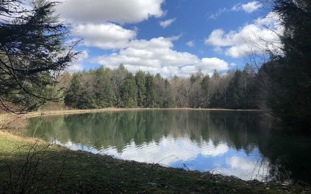 18163 acres in tioga county pennsylvania acre forest