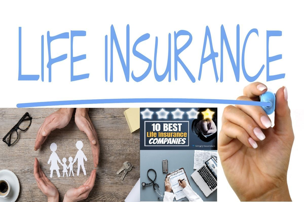 Best Life Insurance Companies In US 2019 Best life