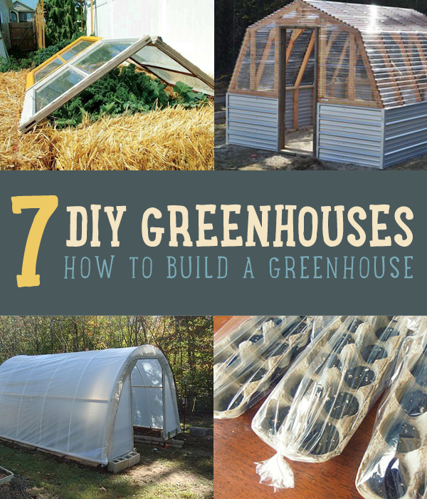 How to make green houses diy greenhouse greenhouse plans and gardens have you ever wanted to build your own diy greenhouse but just didnt know solutioingenieria Gallery