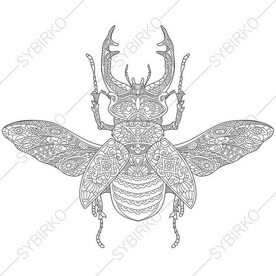 Stag Beetle. 2 Coloring Pages. Animal coloring book pages for Adults ...