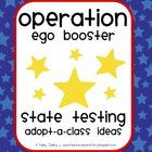 """FREE """"Adopt-A-Class"""" testing project ideas/templates/printables --- a younger non-tested grade """"adopts"""" a tested grade during the duration of the test to motivate them and keep them going!"""