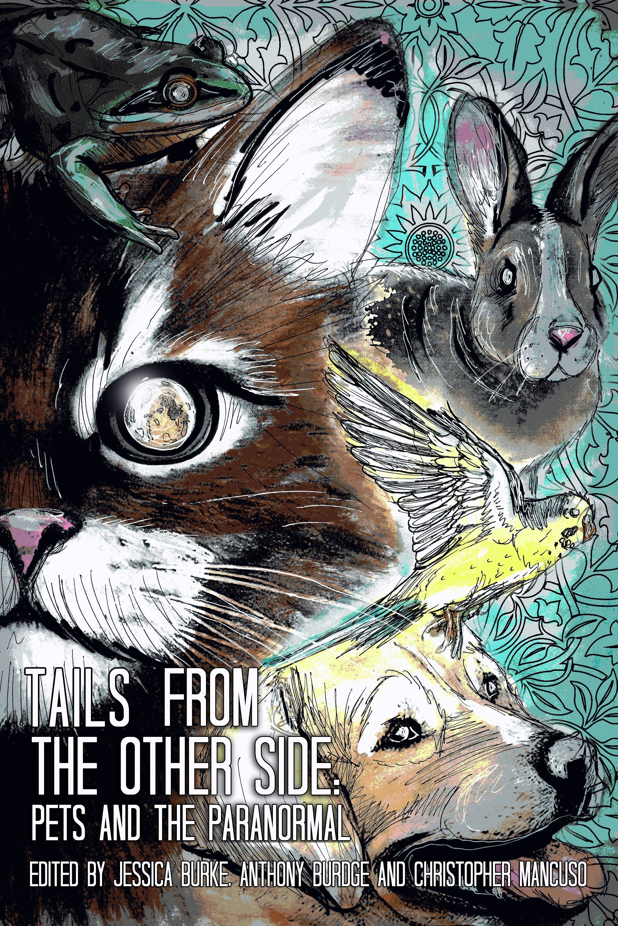 TAILS+FROM+THE+OTHER+SIDE: Pets+and+the+Paranormal  Edited+by+Jessica+Burke,+Anthony+Burdge+&+Christopher+Mancuso Illustrated+by+Luke+Spooner+of+Carrion+House  Pre-Order+Now+Available Halloween+2016+publication To+be+shipped+Mid-October Pre-Ordering+Now+Assists+with+production+and+early+...