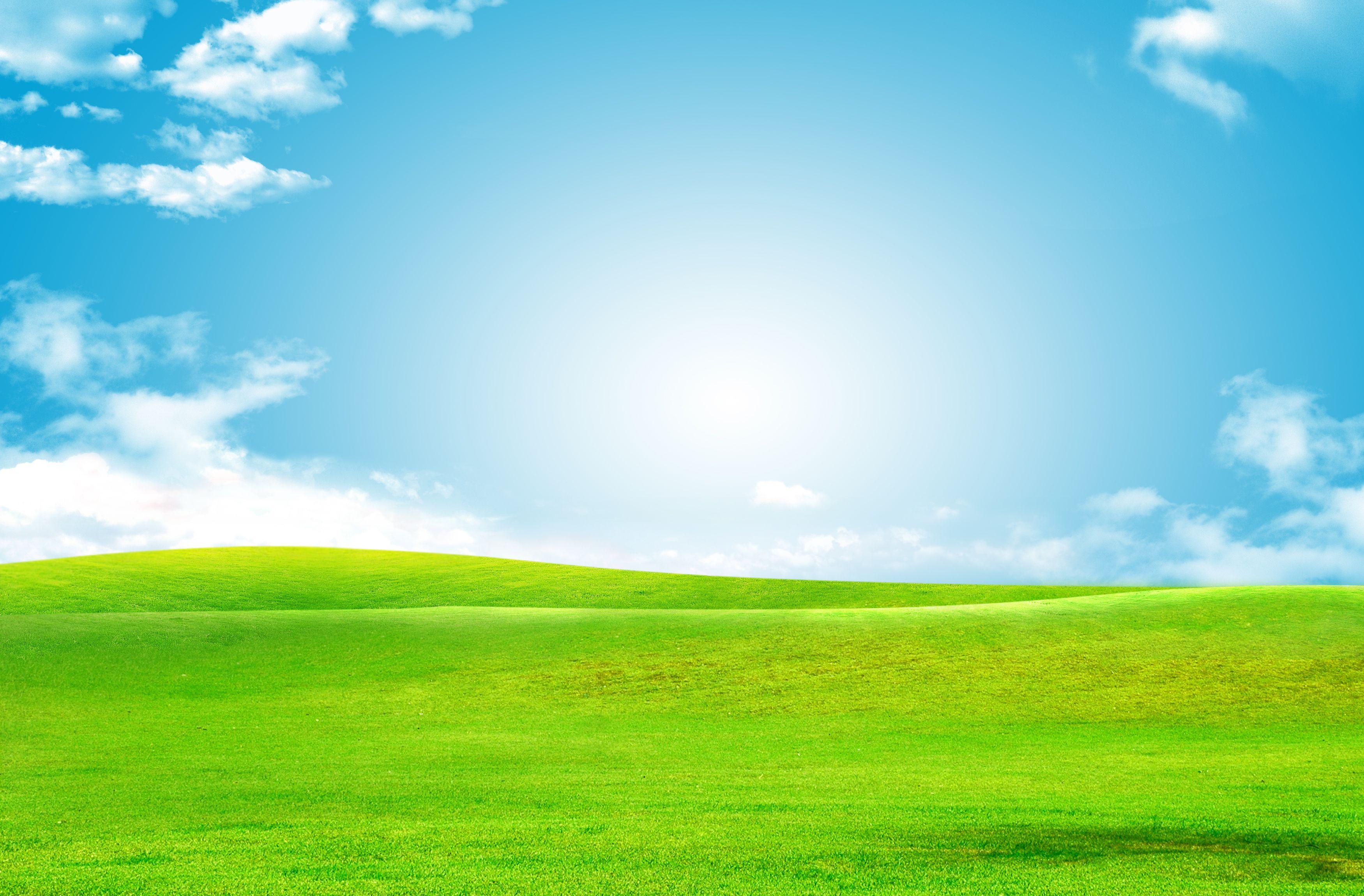 Sky Green Grass Background in 2020 | Grass background, Green grass ...