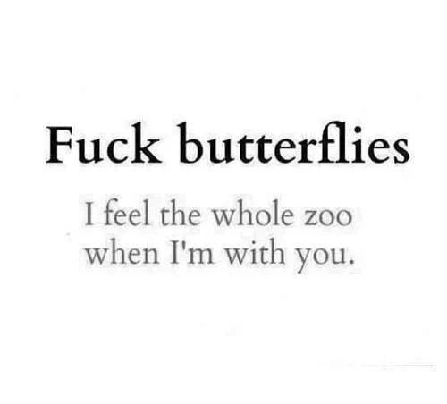 Butterflies Love Quotes Quotes Love Quotes Life Quotes