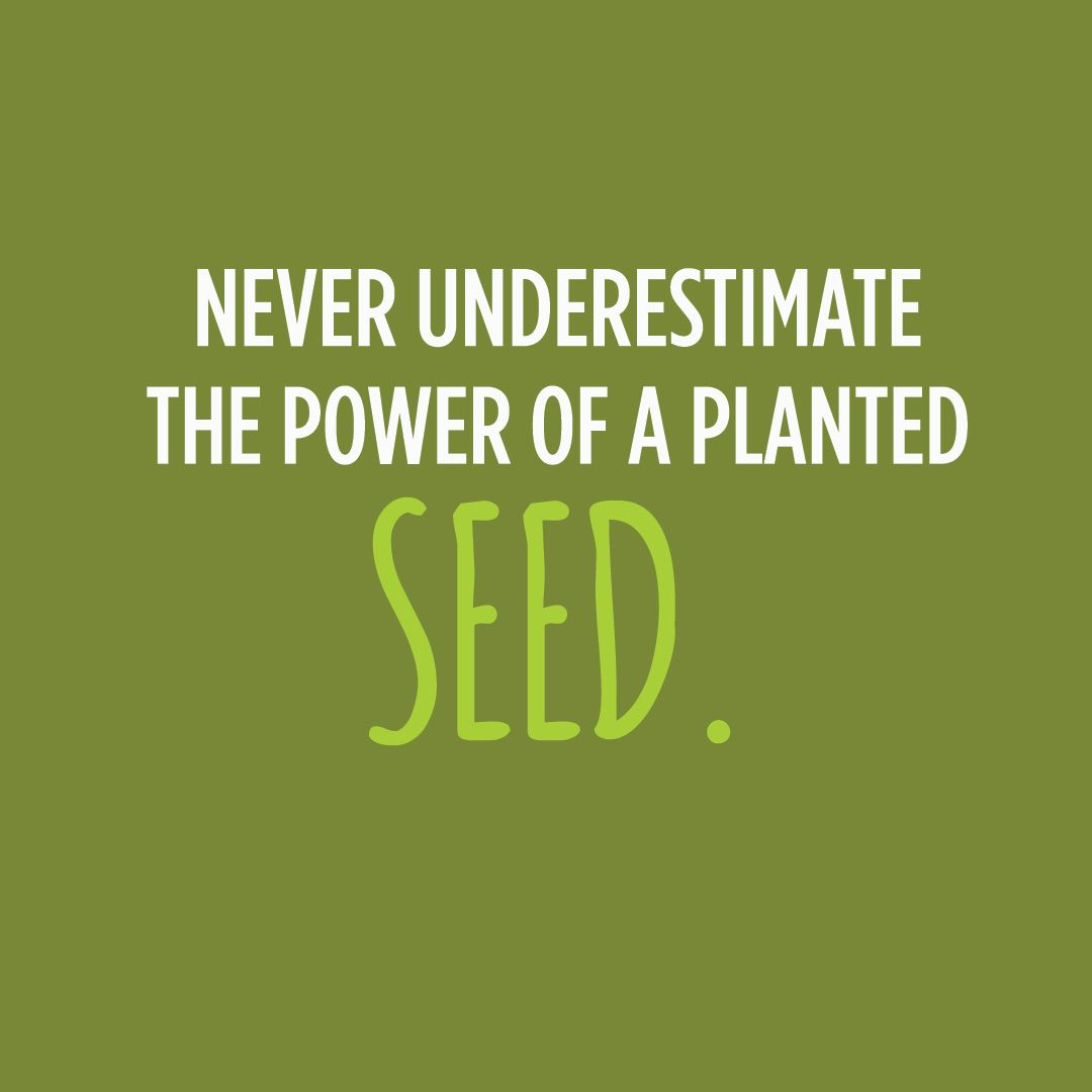 Quotes About Teachers Planting Seeds: Never Underestimate The Power Of A Planted Seed.