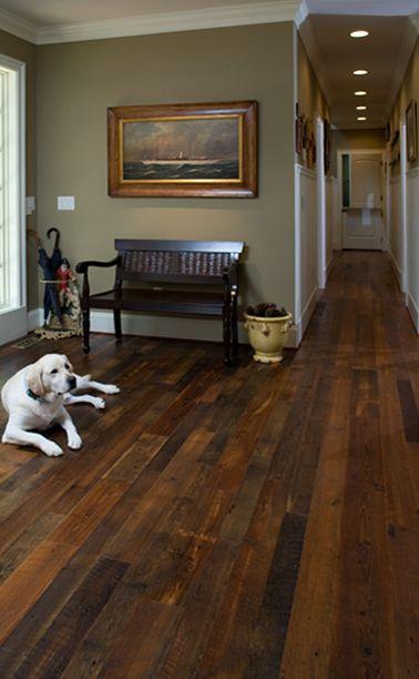 I want barn wood! The dog is pretty cute too!