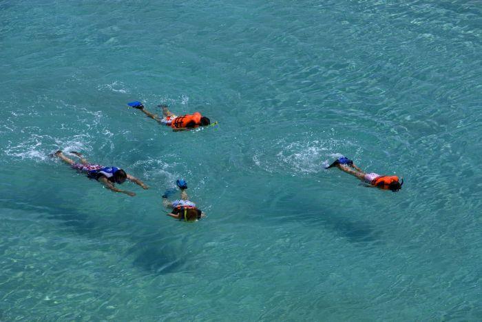 Snorkeling Time In Los Cabos, Baja California Sur