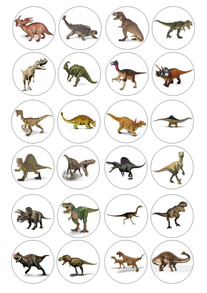 24 Dinosaur Wafer Rice Paper Edible Cupcake Toppers
