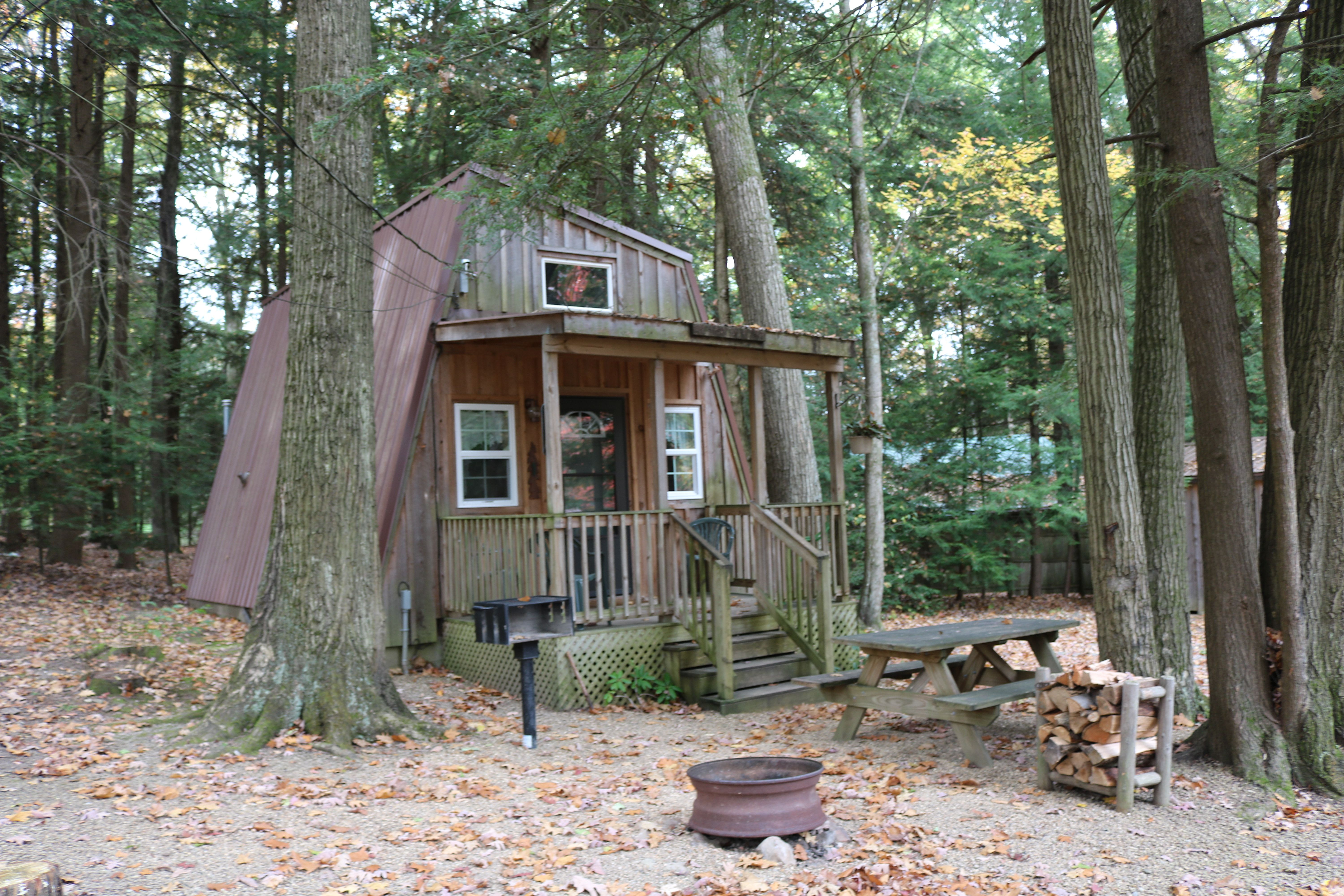 Cabin Available 10 26 28 Forest Cabin Cabin Cabin Rentals