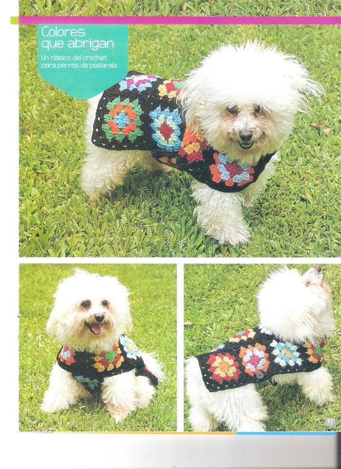 Sweater Grany para perro | Crochet | Pinterest | Hunde, Hund und ...
