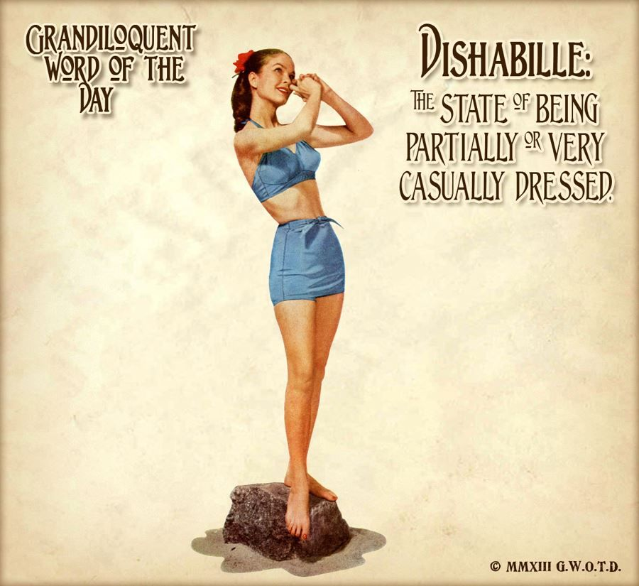 Dishabille (dis•ha•BEEL) Noun: -The State Of Being Only