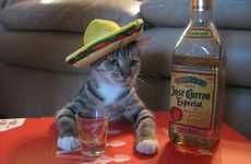 Happy National Tequila Day! 7/24