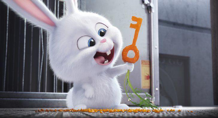 Kevin Hart S Voice Belongs To The Main Villain A Tiny Fluffy Bunny Cartoon Wallpaper Secret Life Of Pets Disney Wallpaper