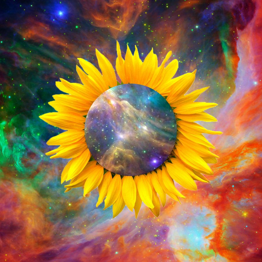 Trippy Sun Flower Fractal Simply Amazing