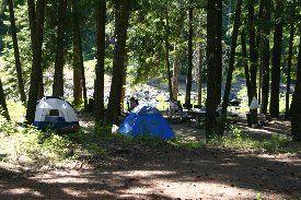 Sawmill Flat Campground, Tourist information about Washington State