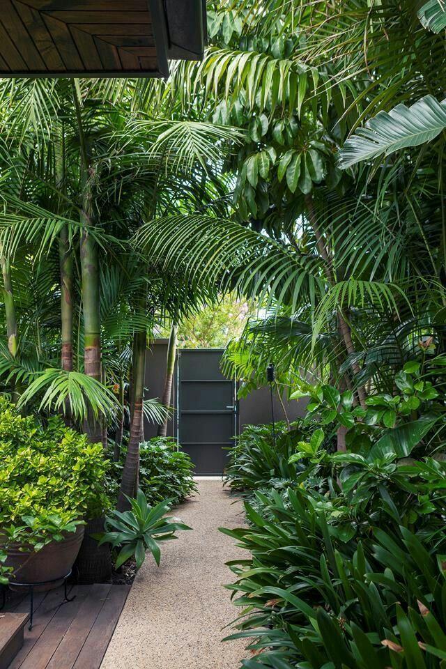 garten weg #garden #garten A tropical garden in the heart of Melbourne, #Garden #heart #Melbourne #Tropical #tropicalgardenideasbackyards