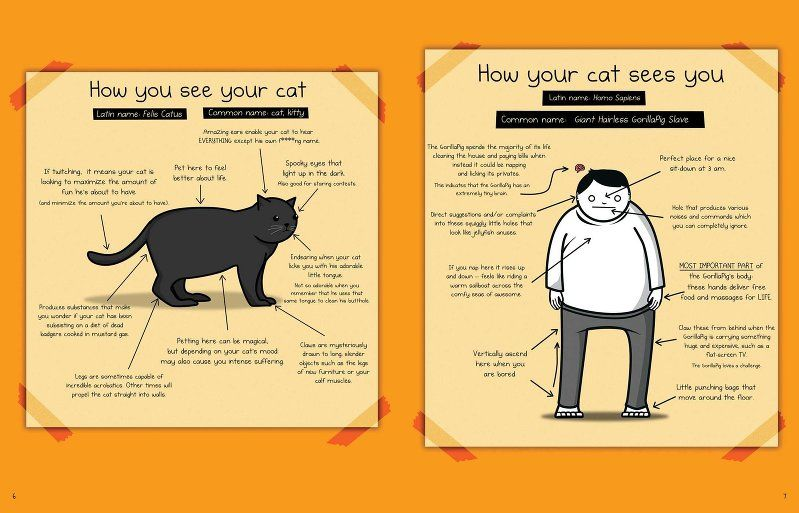how to tell if you cat is plotting to kill you, cat books