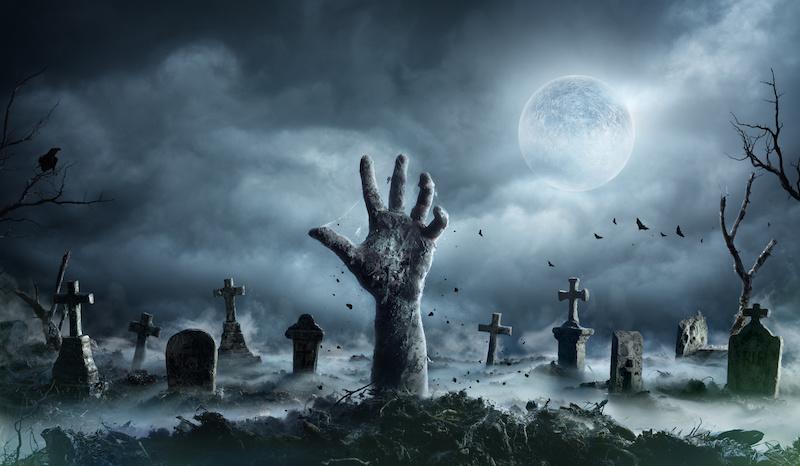 Mensenmassa S Zijn In Coronatijd Uit Den Boze Dus De Gebruikelijke Scare Zones En Spookhuizen Maken Komend Najaar Plaa Halloween Movies Ghost Tour Real Ghosts