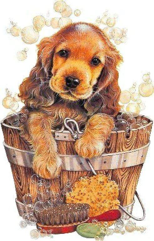 год собаки картинки для декупажа: 6 тыс изображений ...