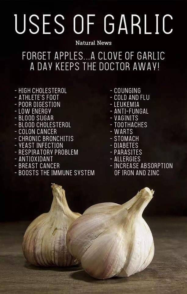 Pin by Be Better Research and Technologies on Better Food ...