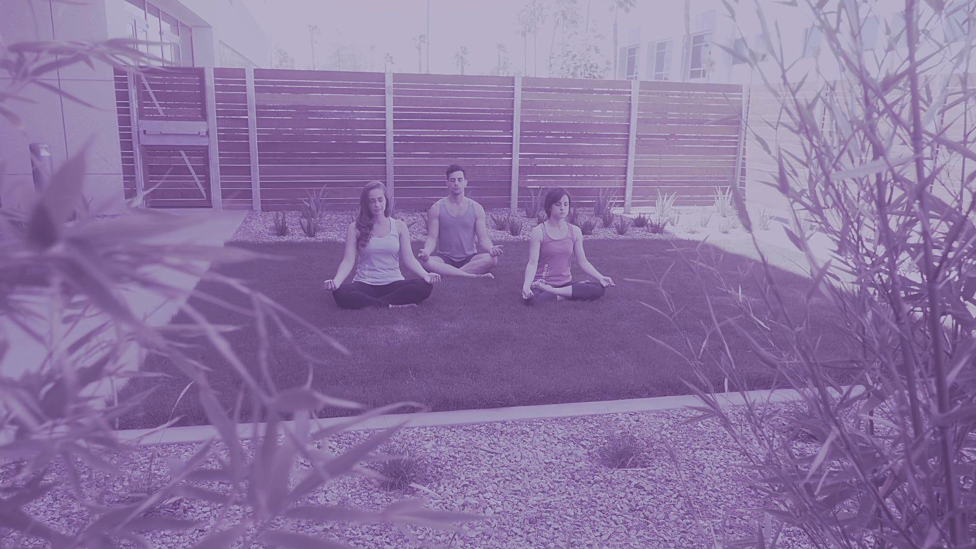 Home Page Wellness company, Mental wellness