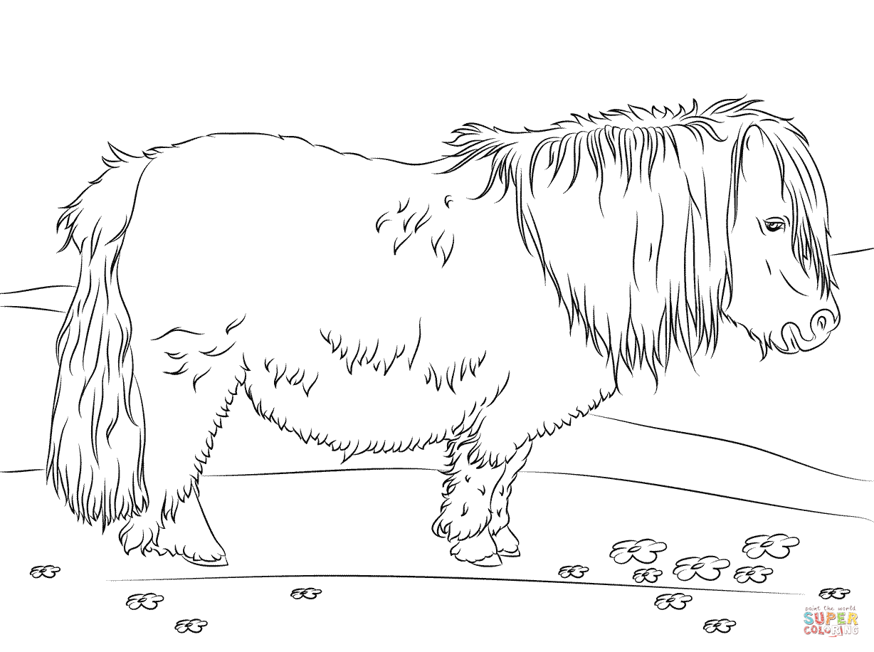 Cute Shetland Pony Coloring Page From Horses Category Select From 27569 Printable Crafts Of Cartoons Natur Horse Coloring Pages Horse Coloring Coloring Pages [ 916 x 1228 Pixel ]