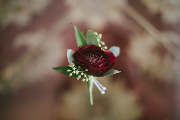 Image Result For Burgundy Ranunculus Boutonniere