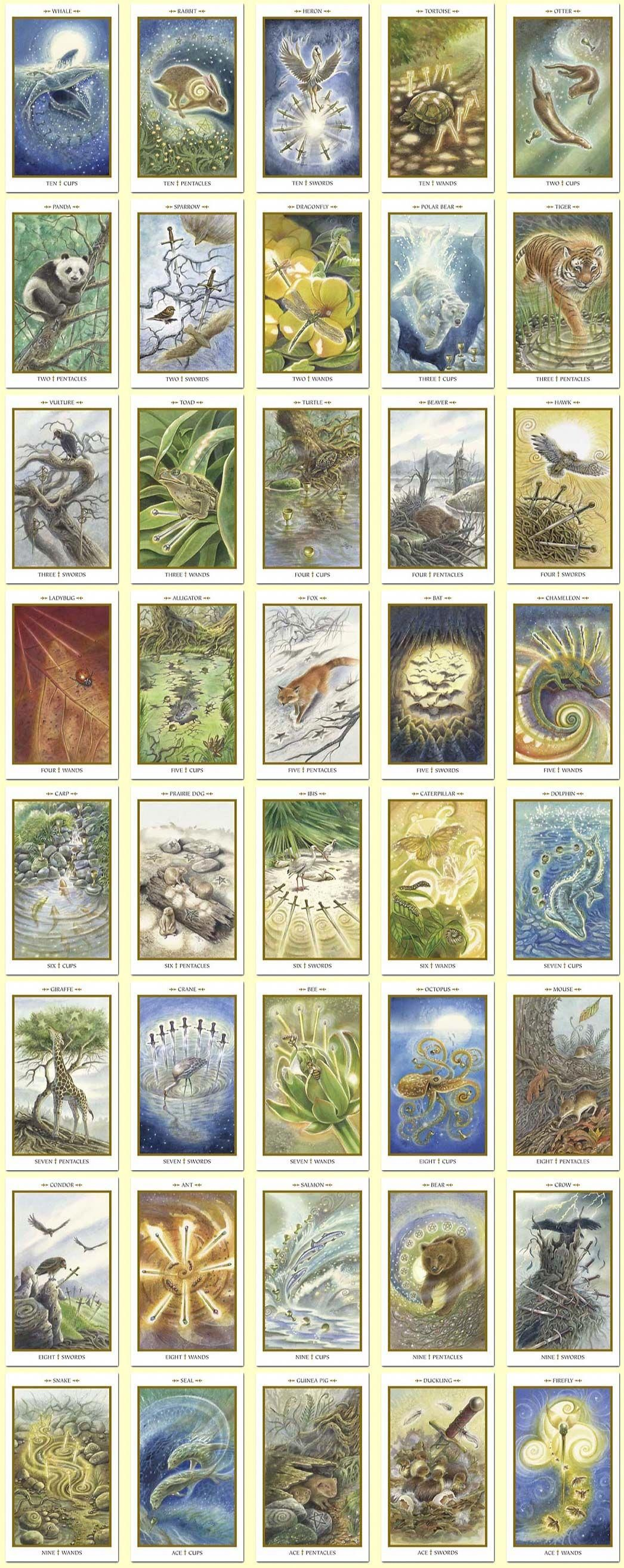 Animals divine tarot minor arcana large collage