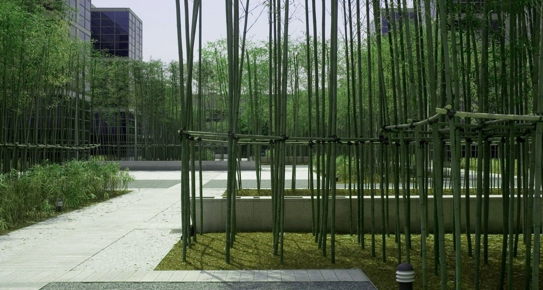 Mikyoung Kim Design Bamboo Garden Lg Headquartersmikyoung Kim Design Landscape Ar Modern Landscaping Modern Landscape Design Contemporary Landscape Design