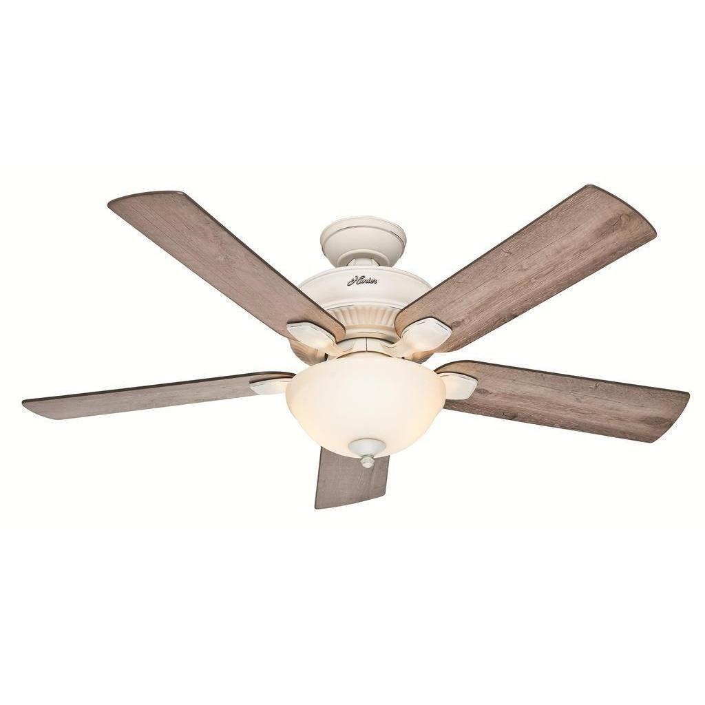 Hunter 52 Matheston Ceiling Fan