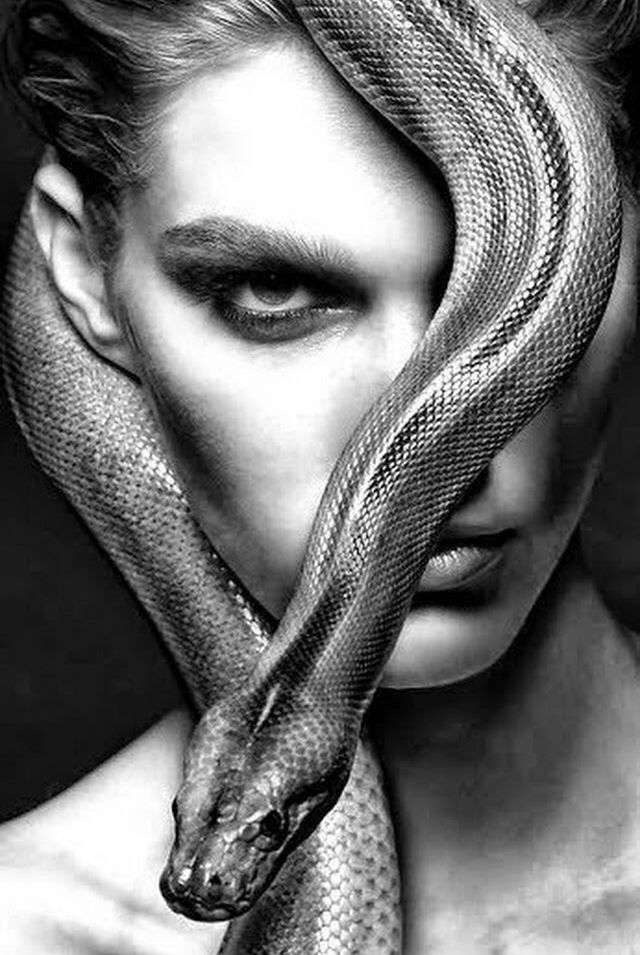Pin by Laurence Loffstadt on ʈꍟɱƥʈɑʈꀤꂦɳꍟɱ Snake, Light