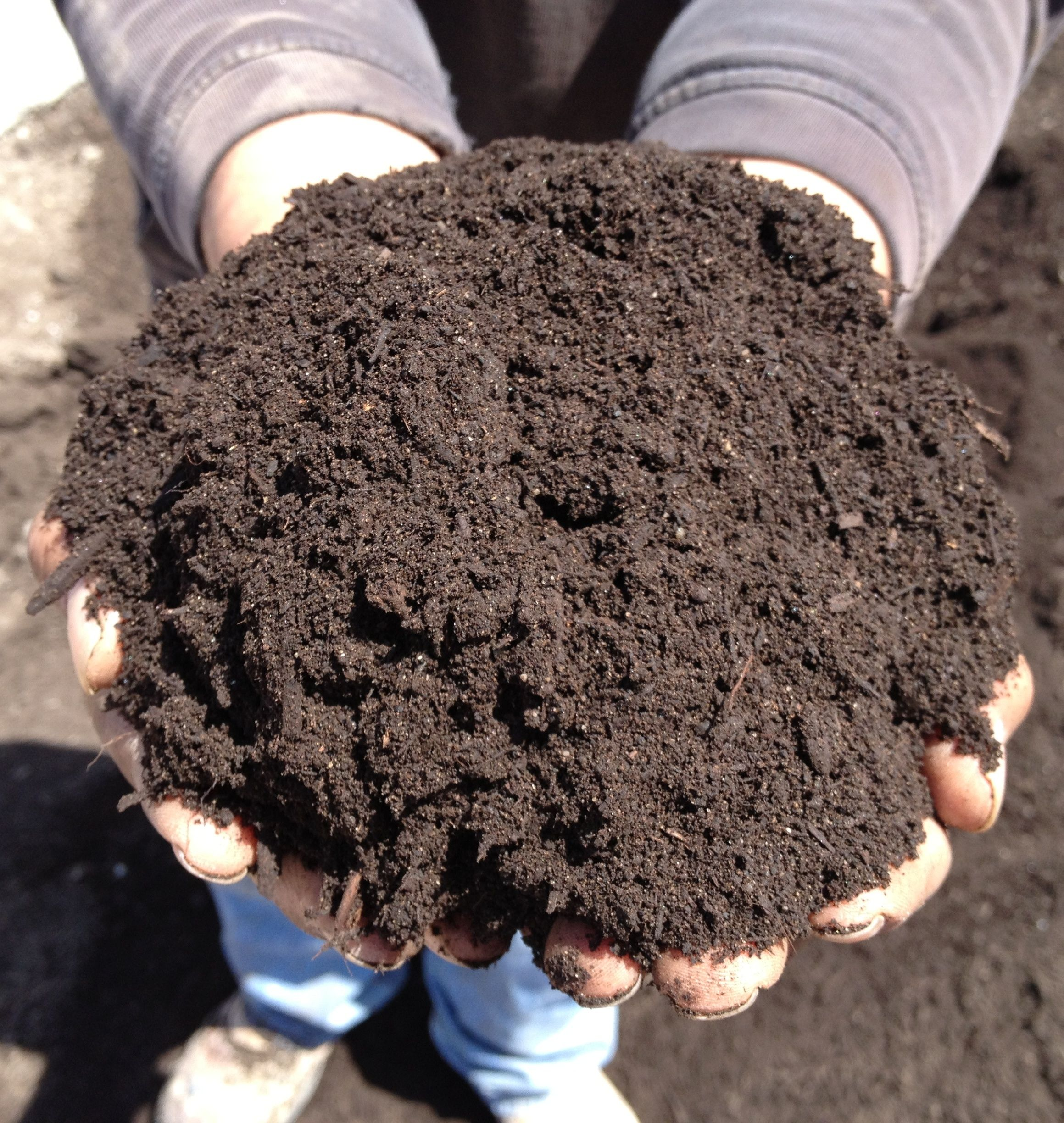 Complete Guide to Composting