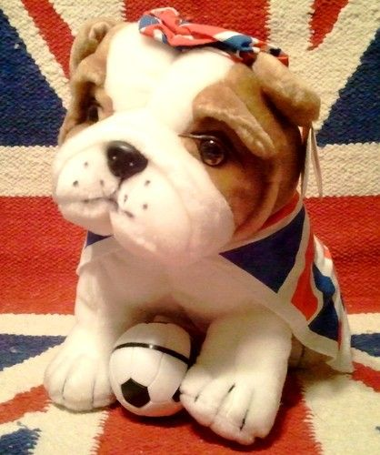 British Bulldog Stuffed Animal English Union Ja Terminus City