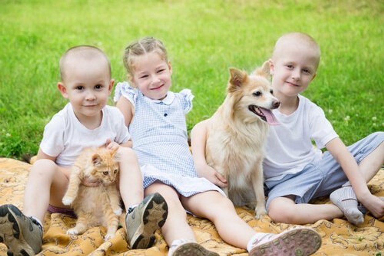 Warum Haustiere gut für Kinder sind Haustiere, Tiere und