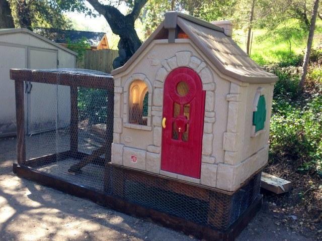 am nager son jardin avec trois fois rien poules. Black Bedroom Furniture Sets. Home Design Ideas