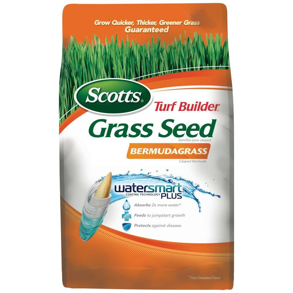 Scotts Turf Builder 1 Lb Bermuda Grass Seed 18350 The Home