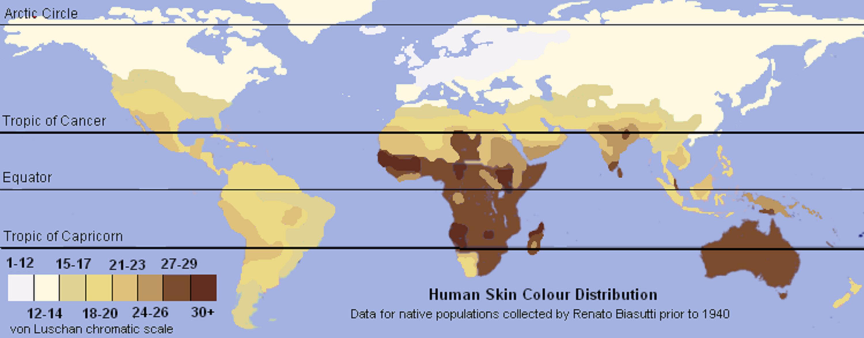 Human Skin Color Of Native Populations 1940 Human Evolution