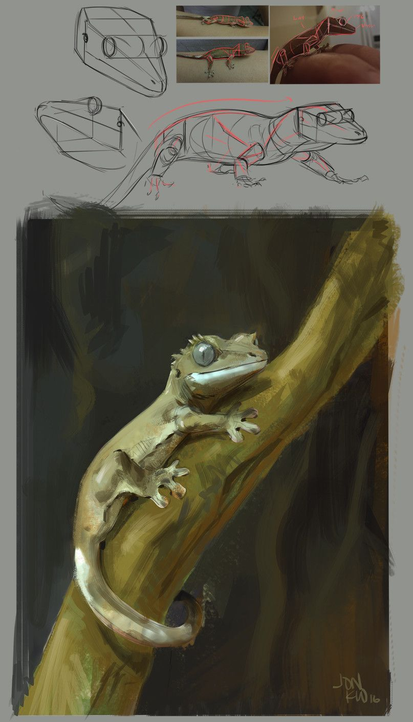 ArtStation - crested gecko , Jonathan Kuo | Painting Process+Shader+ ...