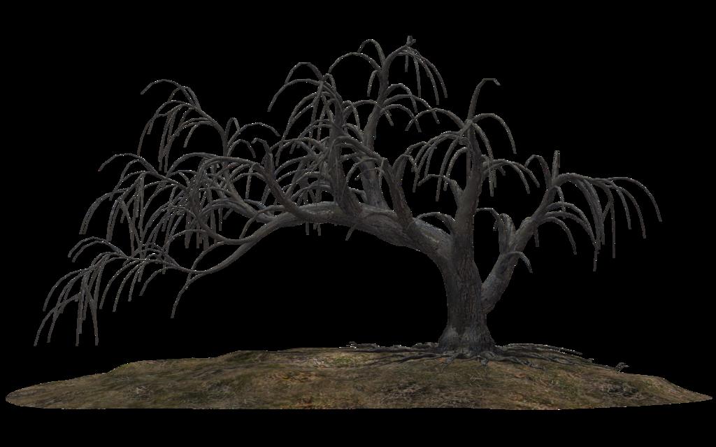Creepy Tree 19 by on