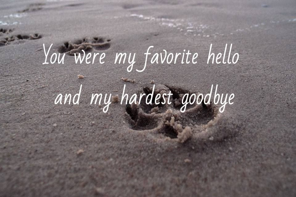 You Were My Favourite Hello And My Hardest Goodbye You Are My Favorite Goodbye Quotes Memories Quotes